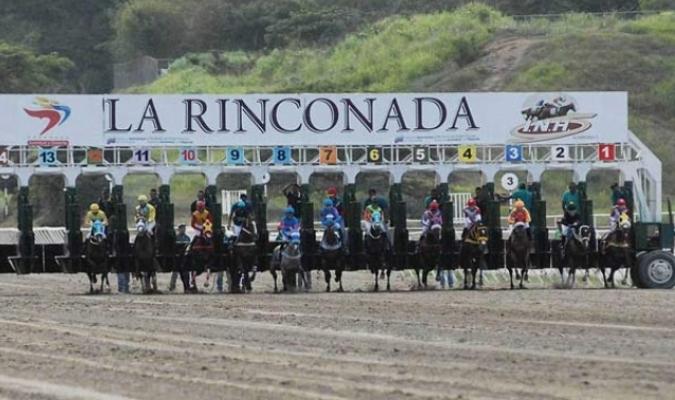 El 18 de enero se reanudan las carreras/ Foto Cortesía